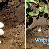 WaterMaxx2: Improving Water Movement